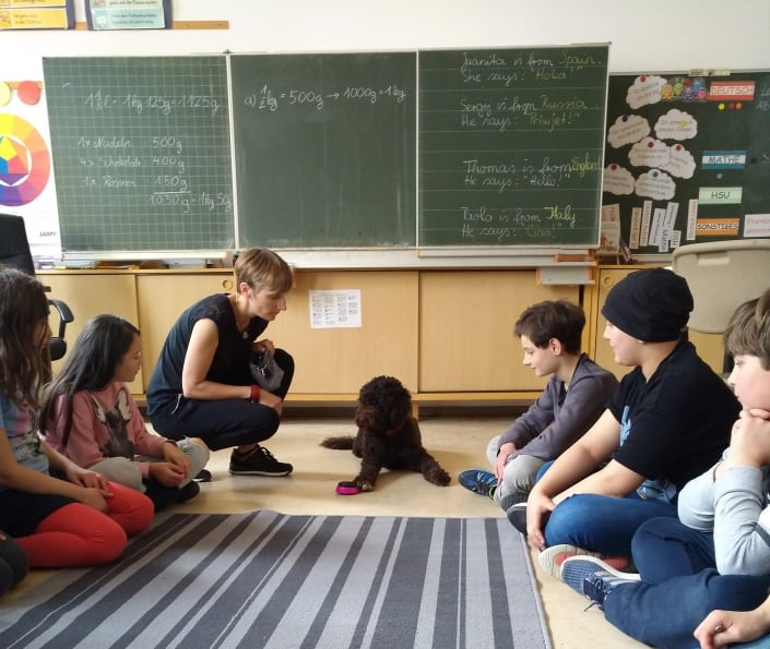 Schulhund im Klassenzimmer