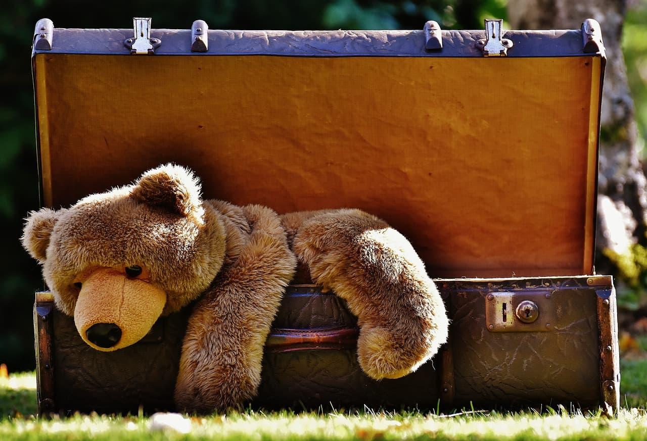 Teddy im Koffer